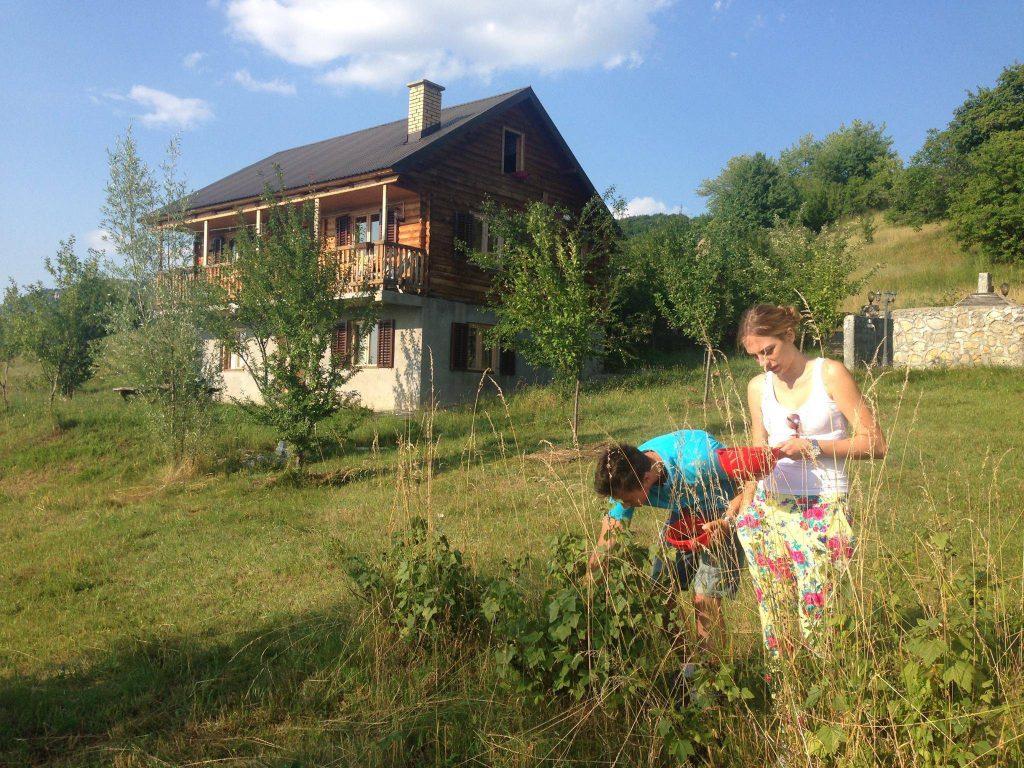 jong koppel met de hand plukken biologische tomaten in de tuin