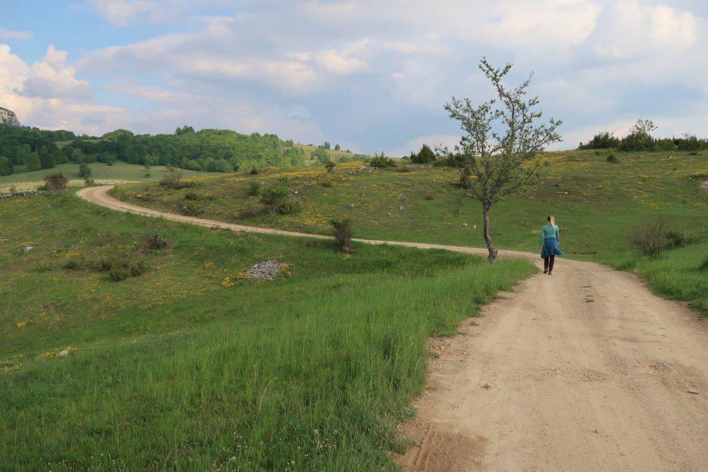vrouw in blauwe trainingspak wandelingen in de natuur